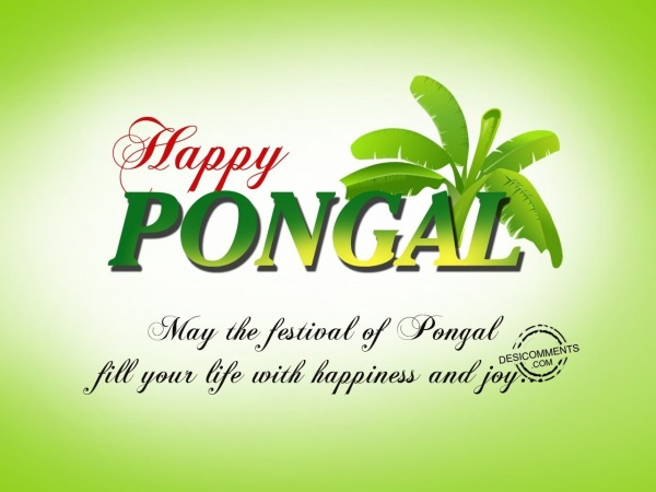 May the festival of pongal