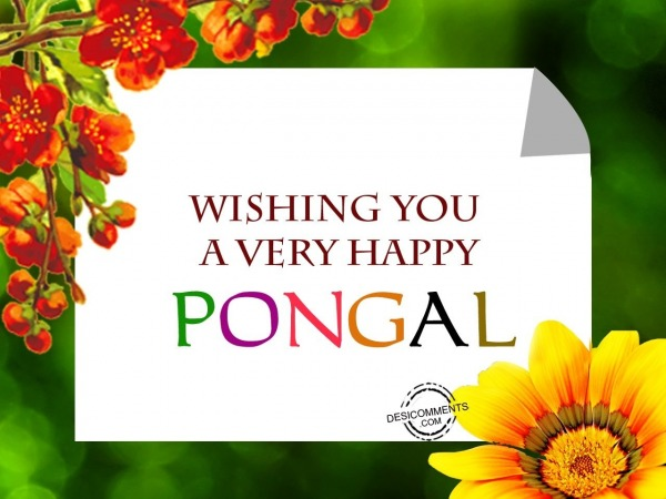 Picture: Wishing you a Happy Pongal