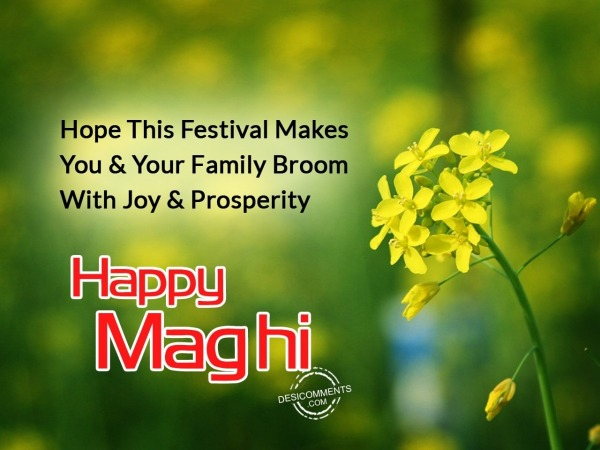 Hope this festival makes you happy - Happy Maghi