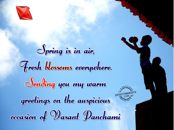 Picture: Spring Is In Air Fresh Blossoms Everywhere