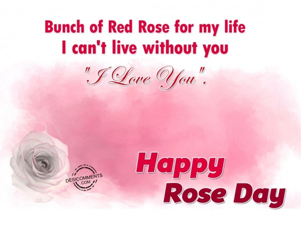 Picture: Bunch Of Red Rose For My Life – Happy Rose Day
