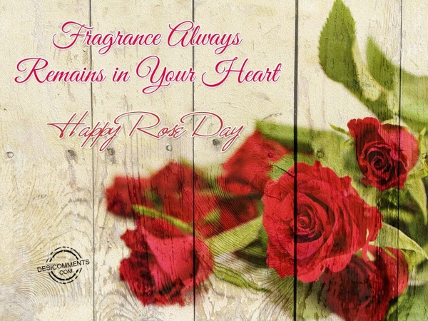 Fragrance Always Remains in Your Heart