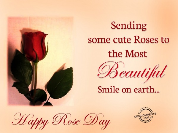 Picture: Sending Some Cute Roses To The Most Beautiful Smile On Earth.