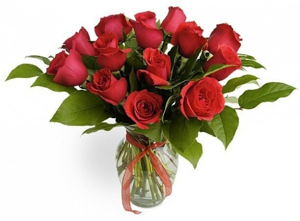 Picture: Image Of Red Roses