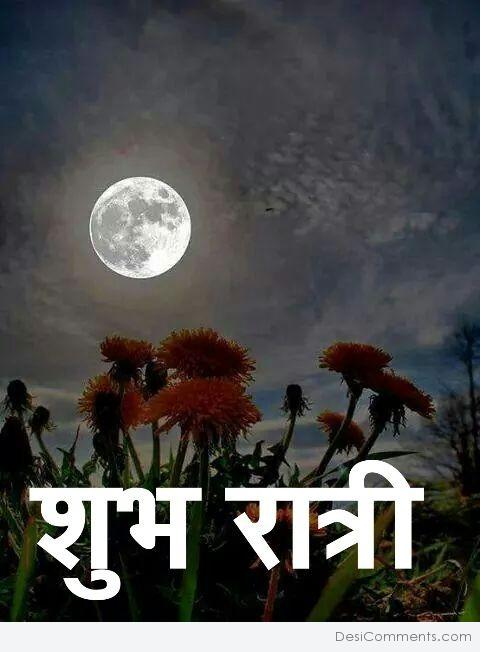 Good Night Wish In Hindi