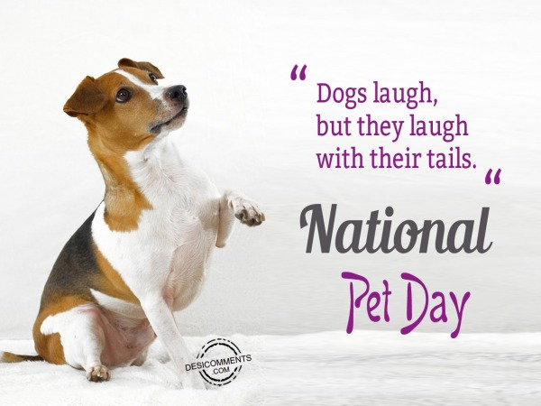 Dogs laugh with their tail, National Pet Day