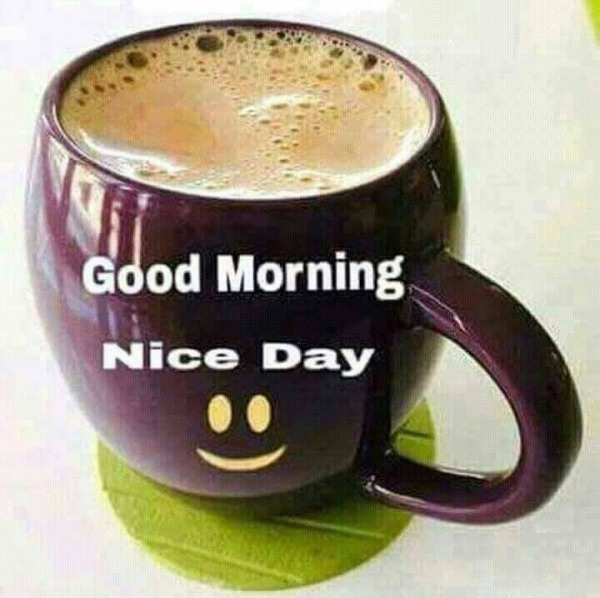 Picture: Good Morning – Nice Day