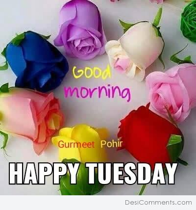 Good Morning Happy Tuesday Desicommentscom
