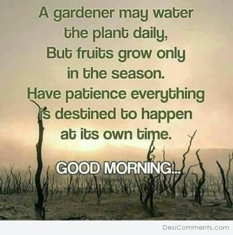 Fruits grow only in season