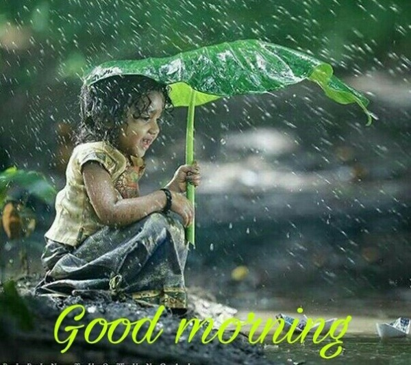 Beautiful Rainy Day Quotes: Good Morning Pictures, Images, Graphics For Facebook