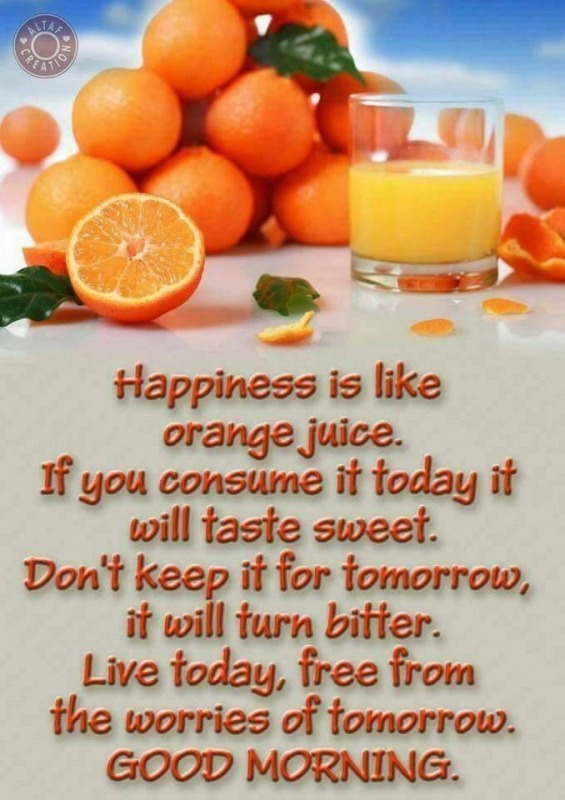 HAPPINESS IS LIKE ORANGE JUICE.