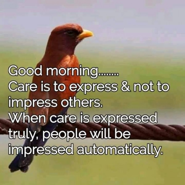 Care Is To Express Not To Impress - Good Morning