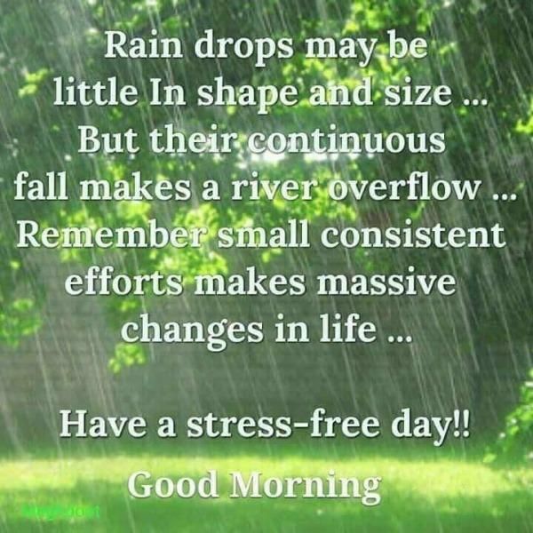 Have A Stress Free Day