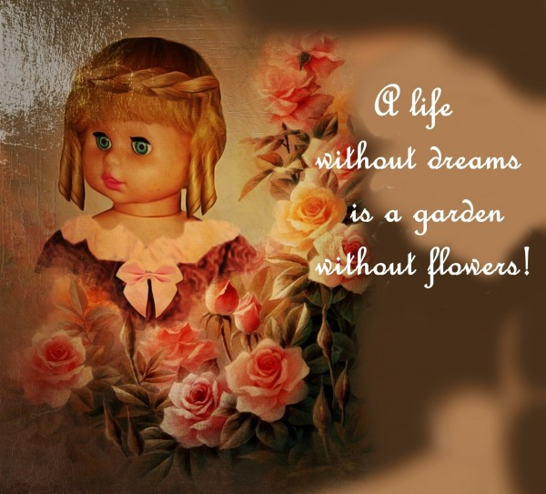 A Life Without Dreams