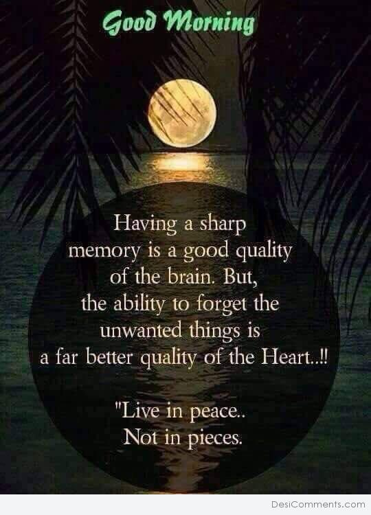 LIVE IN PEACE NOT IN PIECES