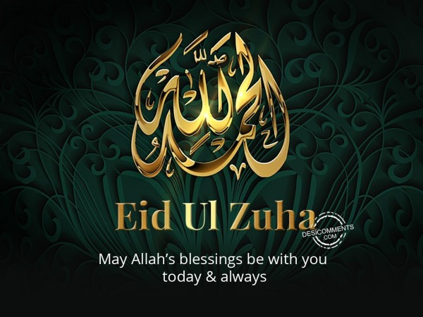 May Allah's blessings, Eid Ul Zuha