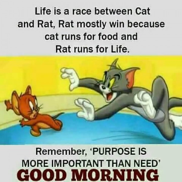 Purpose Is Important Than Need - Good Morning