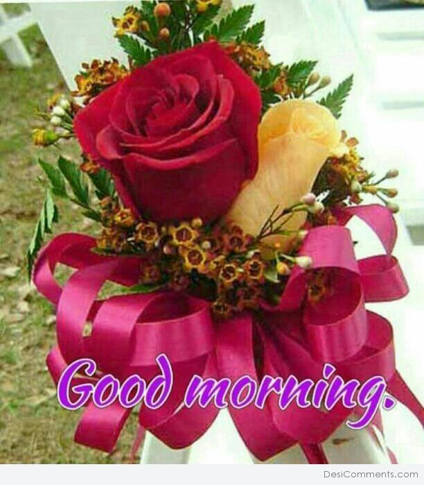 Good Morning With Red Rose Desicommentscom