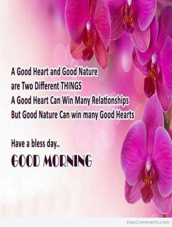 A Good Heart And Good Nature - Good Morning