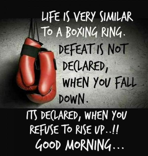 Life Is Very Similar To A Boxing Ring - Good Morning