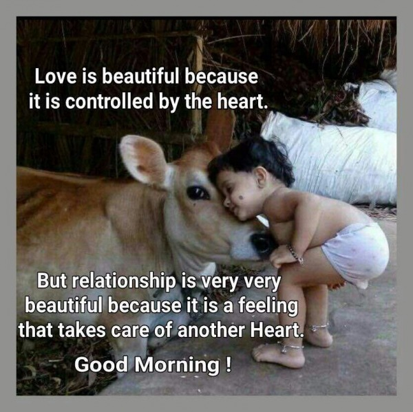 Love Is Beautiful – Good Morning