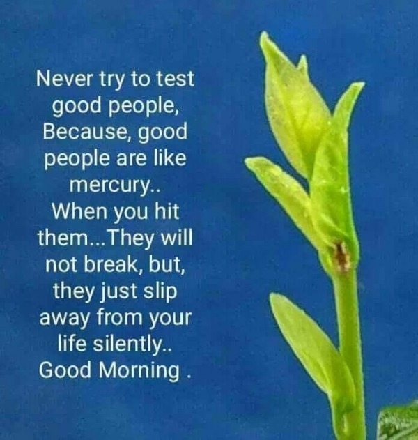 NEVER TRY TO TEST GOOD PEOPLE GOOD MORNING