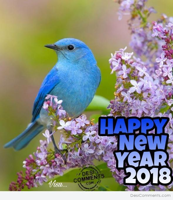 Pic Of Happy New Year 2018