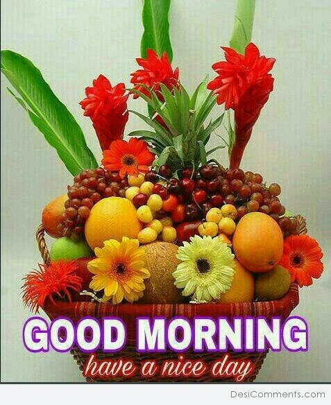 Image Of Good Morning Have A Nice Day Desicommentscom