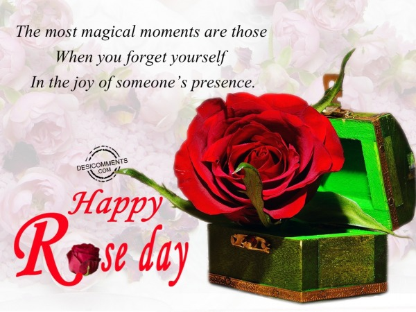 The most megical moments are, Happy Rose Day