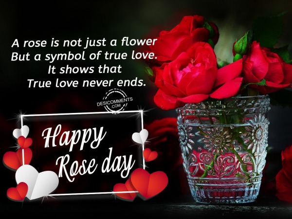 A rose is not just a flower, Happy Rose Day