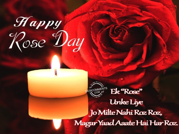 Picture: Ek rose unke liye, Happy Rose Day