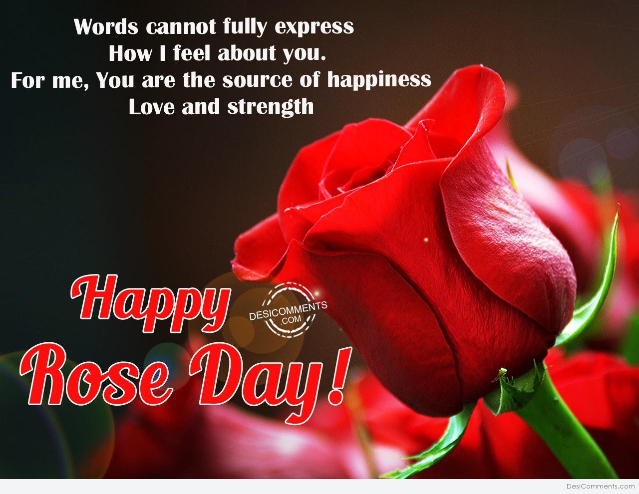 Rose Day Pictures Images Graphics