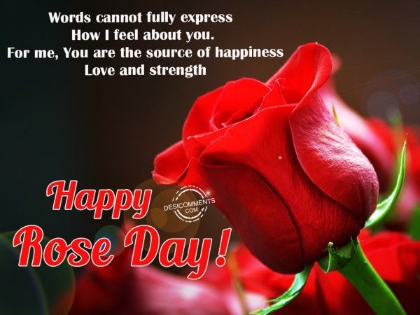 Words cannot fully express, Happy Rose Day