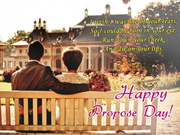 Picture: I wish I was, Happy Propose Day