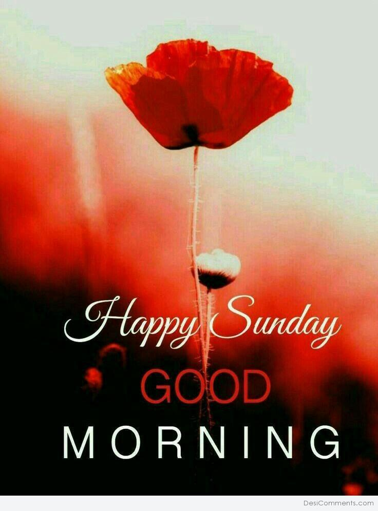 Get Here Good Morning Images With Sunday Soaknowledge