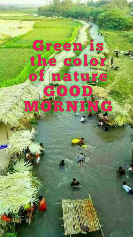 GREEN IS THE COLOR OF NATURE - GOOD MORNING