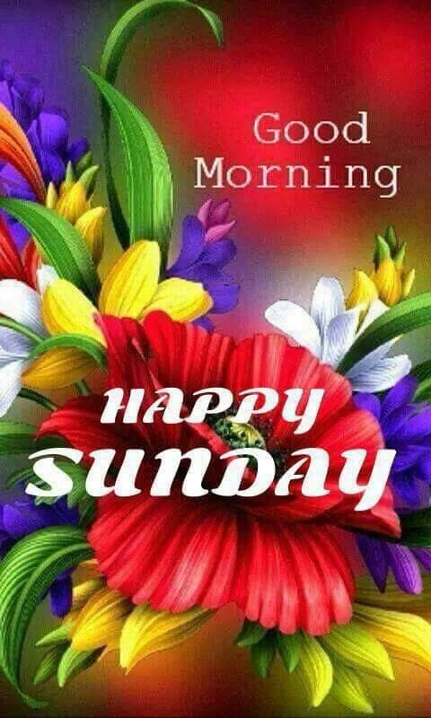 Pic Of Good Morning Happy Sunday Desicommentscom