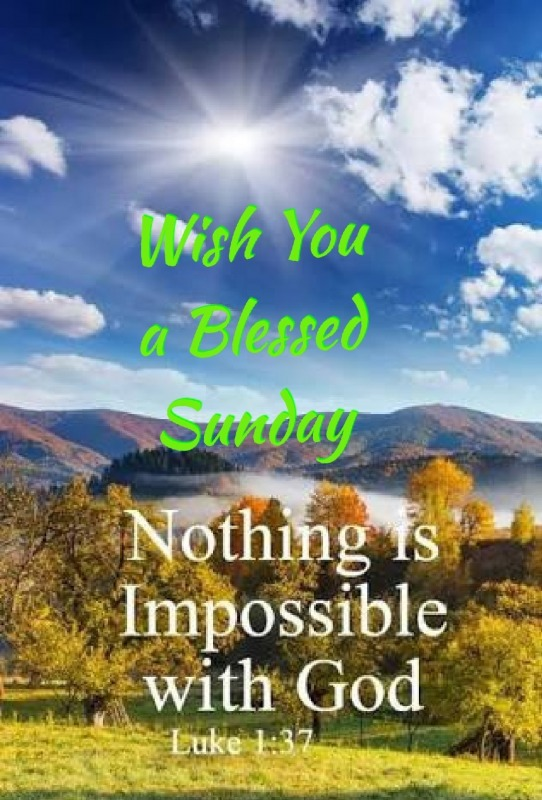 Wish You A Blessed Sunday