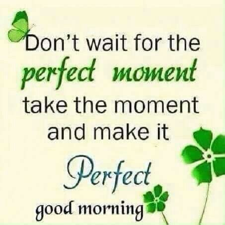 "Don""t wait for the perfect moment. Good morning"