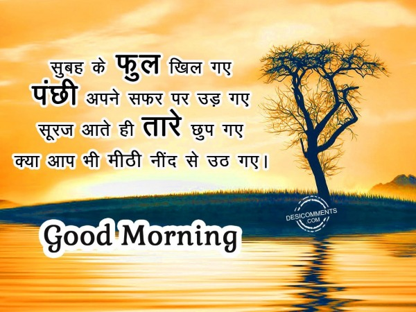 Subha ke phool khil gye – Good Morning