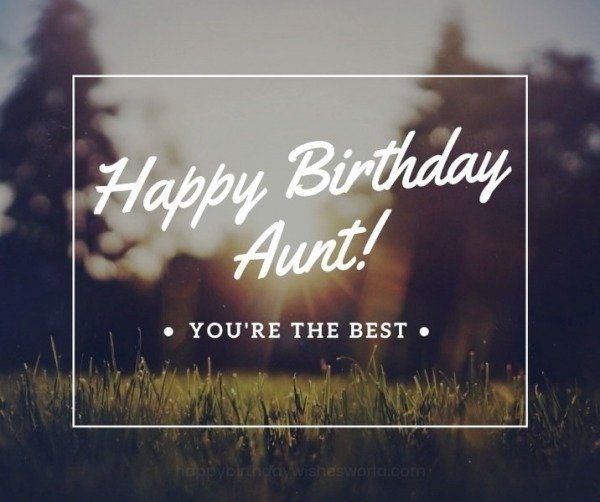 Happy Birthday Aunt You Are The Best