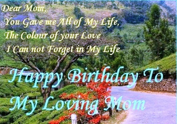 Picture: Happy Birthday To My Loving Mom