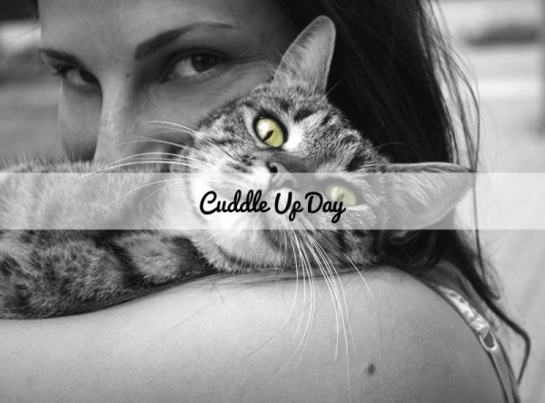 Cuddle Up Day Picture