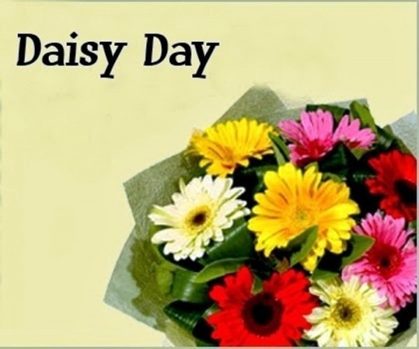 Picture: Daisy Day Nice Pic