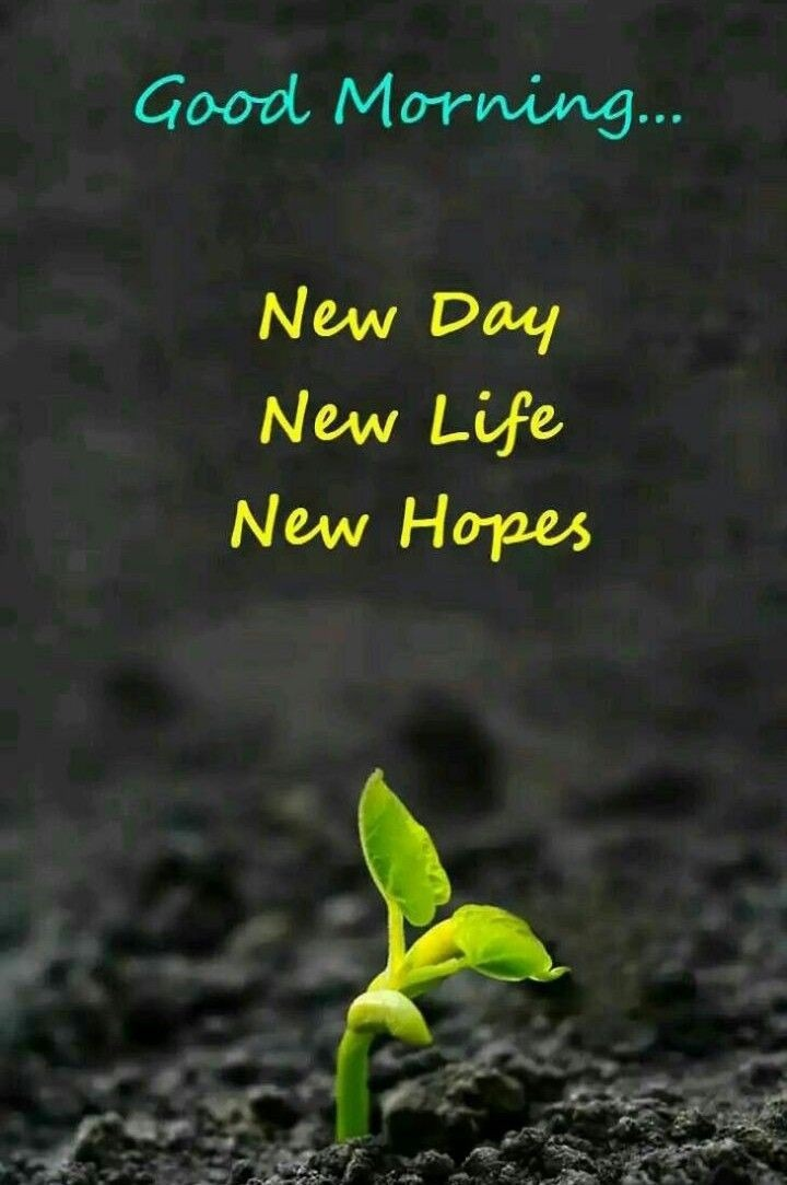 good morning new day new life new hopes desicomments com