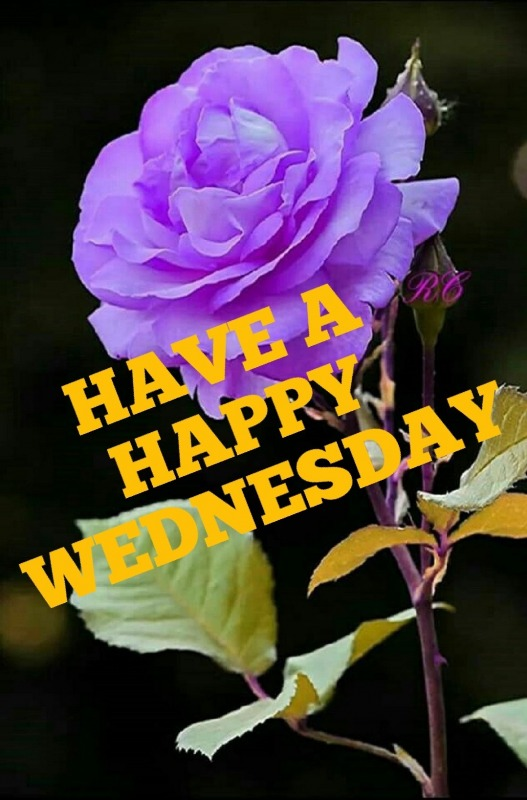 Picture: Have A Happy Wednesday