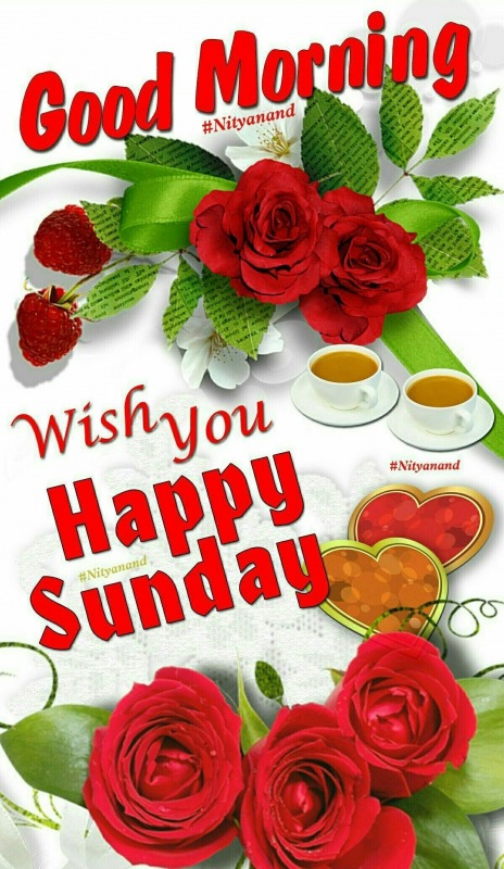 Wish You A Happy Sunday
