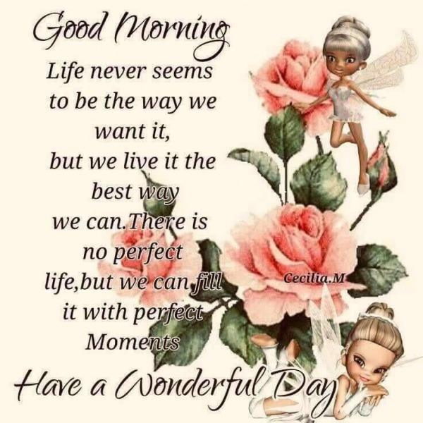 There Is No Perfect Life. Have A Wonderful Day
