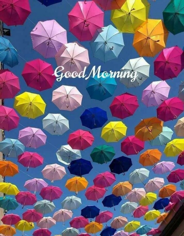 Picture: Colorful Good Morning