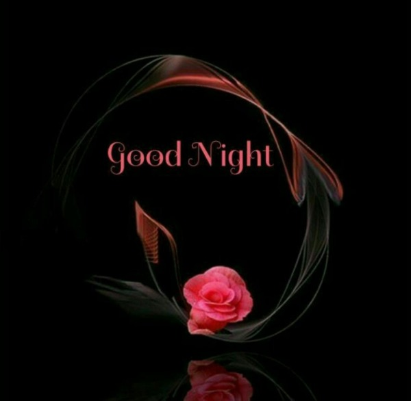Picture: Good Night With Pink Rose